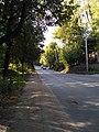 Улица Лермонтова1.jpg
