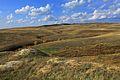 Урочище Утиная гора - panoramio.jpg
