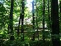Храм Перенесення мощей Святого Миколая УГКЦ. - panoramio (12).jpg