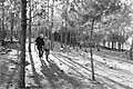 בן שמן - טיול ביער-JNF006027.jpeg