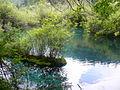 九寨沟的精灵-水 - panoramio.jpg