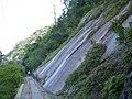 屋久島 - panoramio (12).jpg