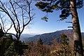 木曽見茶屋 - panoramio (1).jpg