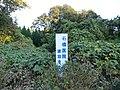 緑に埋もれる建設予定地 - panoramio.jpg
