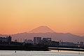 葛西臨海公園からの富士山 - panoramio.jpg