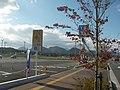 薬王堂前から七ツ森 Taiwa - panoramio.jpg