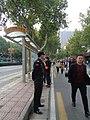 西安国际马拉松之含光路南段 13.jpg