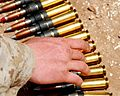 .50 BMG ammunition for African Lion 2009 .jpg