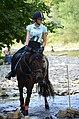 02018 0539 Abschied vom Sommer, Reiten auf den Huzulen Pferden in Rudawka am Wisłok.jpg