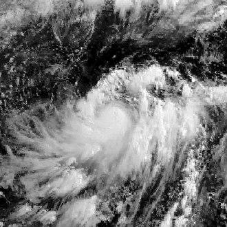 1988 Pacific typhoon season - Image: 04W1988