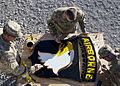 101ST Airborne Division soldiers paint logo 121206-A-VA638-002.jpg