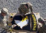 101ST Airborne Division soldiers paint logo 121206-A-VA638-002.jpg