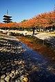 131123 Nozoe-kita Park Harima Hyogo pref Japan02s3.jpg