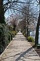 150405 Leinpfad am Rhein.jpg