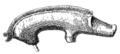 1904 Guilden Morden boar drawing.png