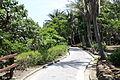 2010 07 16320 5673 Taitung City, Taiwan, Cobblestones, Walking paths.JPG
