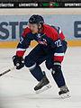 20150207 1809 Ice Hockey AUT SVK 9663.jpg