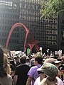 2019 Climate Strike Protest Chicago.jpg