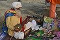 2019 Feb 04 - Kumbh Mela - Folk Musician 1.jpg