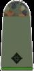 211-Leutnant.png