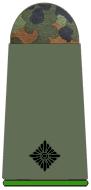 211-Leutnant