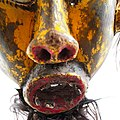 2248 5500a1 detail Chewa (7452355702).jpg