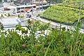 2 Chome Sannōshita, Tama-shi, Tōkyō-to 206-0042, Japan - panoramio.jpg