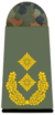 321-Generalmajor.png