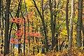 3 Ponds Trail (8) (15614614146).jpg
