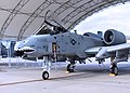 476th Fighter Group - A-10 Thunderbolt II.jpg