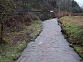 A Swollen River Beal at Jubilee - geograph.org.uk - 665512.jpg