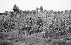A Vickers machine-gun team of 7th Royal Northumberland Fusiliers, 59th (Staffordshire) Division in position in a field of corn at Someren in Holland, 21 September 1944. BU1086