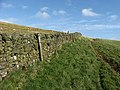 A field boundary dyke - geograph.org.uk - 743376.jpg