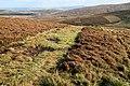 A grass access track through a grouse moor - geograph.org.uk - 1019621.jpg