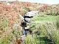 A small Dartmoor Stream - geograph.org.uk - 1038045.jpg