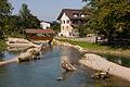 Aarberg-Alte-Aare.jpg