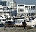 Admiring The Yachts In Antwerp (140868113).jpeg
