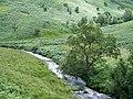 Afon Doethie, Ceredigion - geograph.org.uk - 512028.jpg