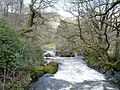 Afon Lledr - geograph.org.uk - 134979.jpg