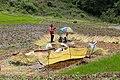 Agriculture in Bhutan 05.jpg