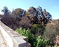 Alcoutim (Portugal) (32431799963).jpg