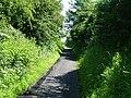 Aldcliffe Marsh Cutting, Lancaster - geograph.org.uk - 58178.jpg