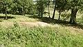 Allanaquoich Farm (Mar Lodge Estate) (16JUL17) (20).jpg