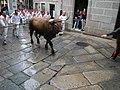 Allariz - Festa do Boi 2012 (7336625306).jpg