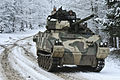Allied Spirit I, Combined Arms Battle 150126-A-EM105-392.jpg