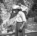 """Alojz Komac, Trenta 52, nese sir """"v škufo"""" 1952 (3).jpg"""