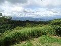 Along the Red Trail - Finca Esperanza Verde - Near Matagalpa - Nicaragua - 09 (31650512656).jpg