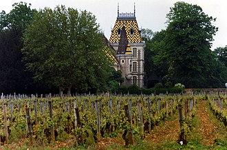 Aloxe-Corton wine - Vineyards on the outskirts of the village of Aloxe-Corton. These vineyards are classified as Premier Cru.