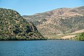 Alto Douro Vinhateiro DSC00366 (37157629592).jpg
