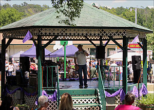 Altus, Arkansas - Live entertainment at the 2013 Grape Festival
